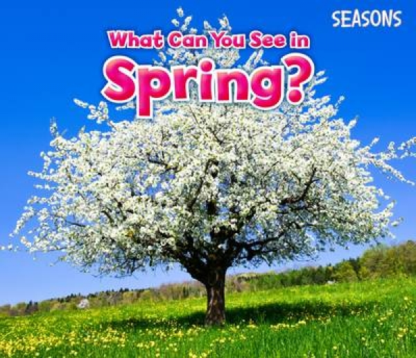 What Can You See in Spring Sian Smith New Paperback Free UK Post