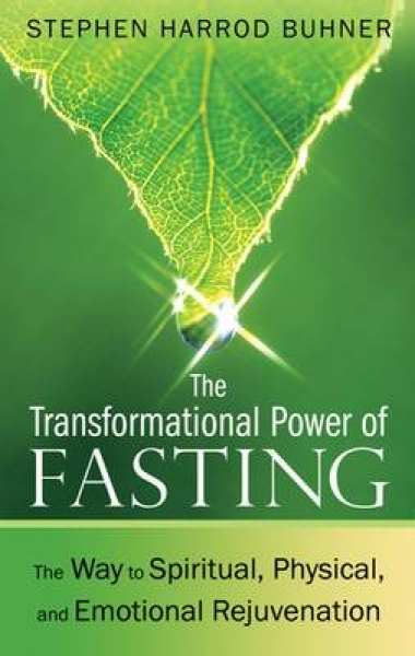 Transformational Power of Fasting Stephen Harrod Buhner New Paperback Free UK Po