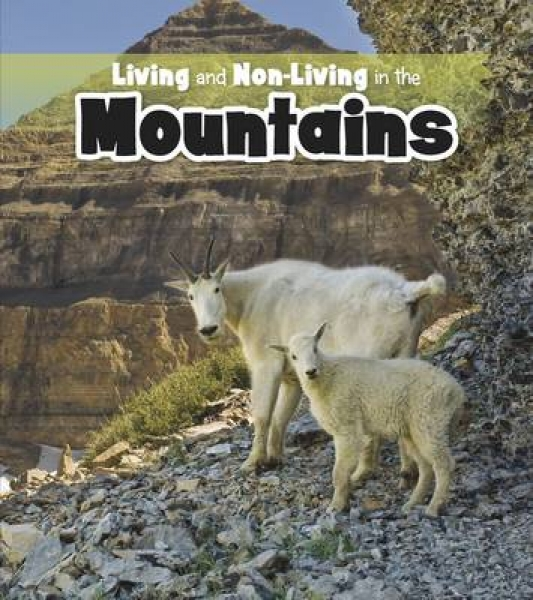 Living and Non-Living in the Mountains 9781406266009 Rebecca Rissman Paperback N