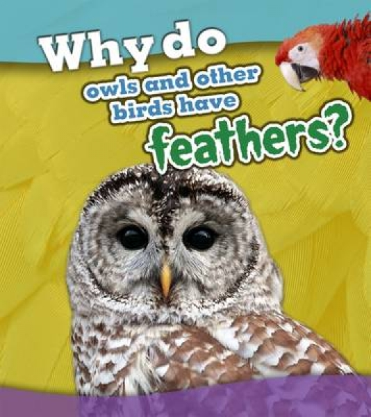 Why Do Owls and Other Birds Have Feathers 9781406299274 Holly Beaumont Paperback