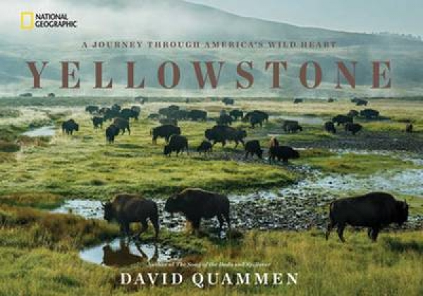 Yellowstone David Quammen Hardback New Book Free UK Delivery